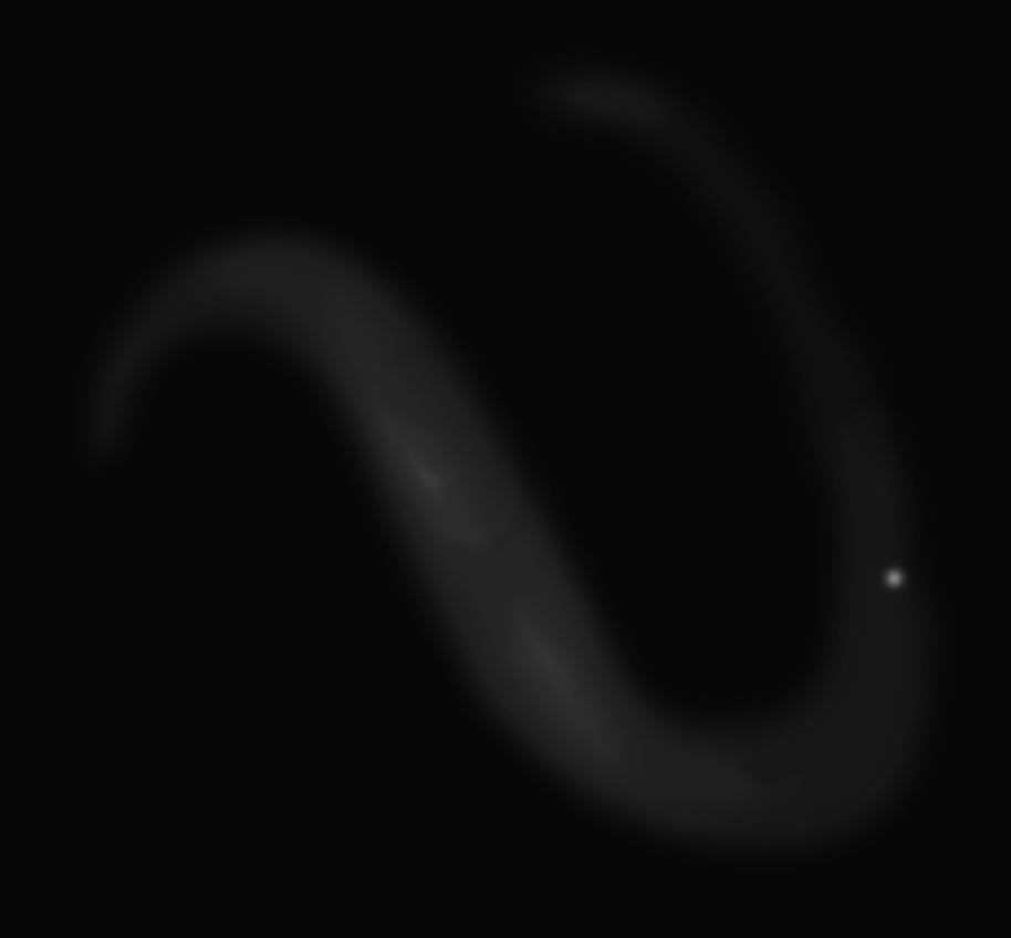 2019_07_10-NGC7552-gp.png
